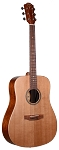 (Brand New) Teton STS105 NT Dreadnaught Acoustic Guitar