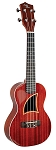 Eddy Finn EF-75-MC Solid Mahogany Concert Sized Ukulele Natural High Gloss Finish