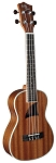 Eddy Finn EF-8-MC Solid Mahogany Concert Sized Ukulele Natural Satin Finish